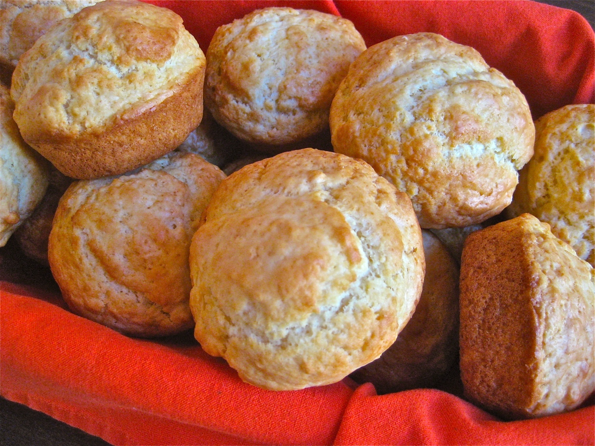 Plain American Muffins